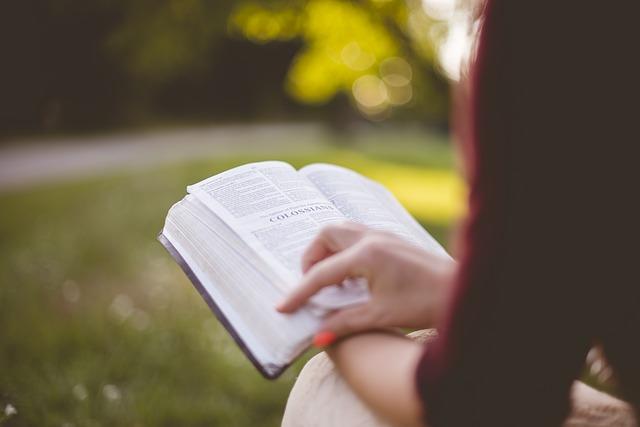 Kilka programów do indywidualnego studiowania Biblii